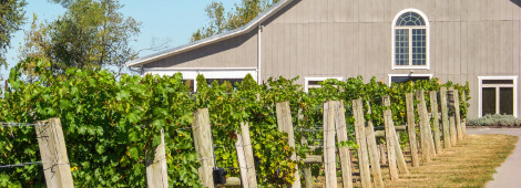 Jean-Farris-Winery-&-Bistro-01