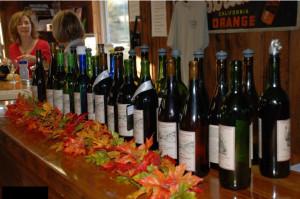 sinking valley bottles