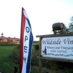 Wildside Vines