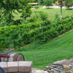 Atwood-Hill-Winery-03