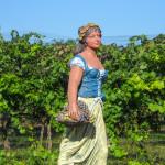Brooks-Hill-Winery-05