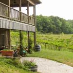 Cedar-Creek-Vineyards-01